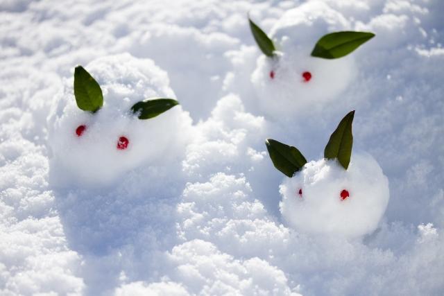雪の日にお墓参りをする際の注意点